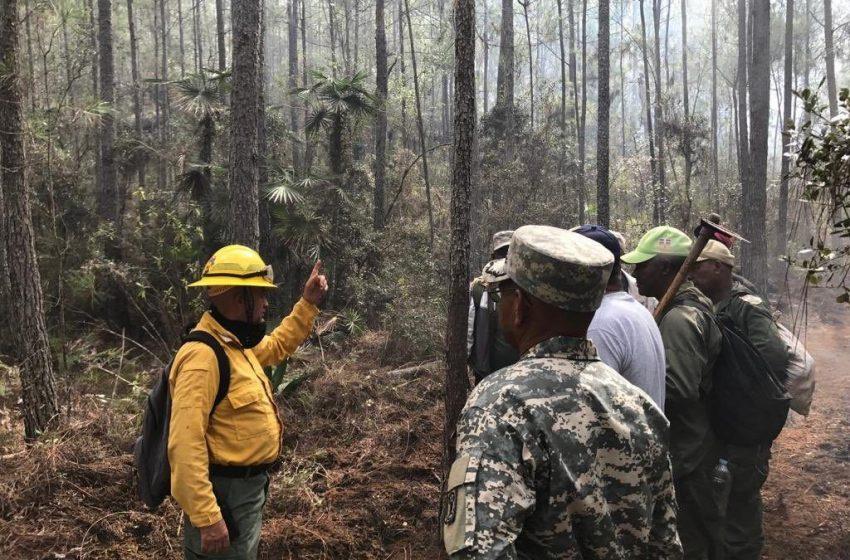 Fuego afecta al Parque Nacional Sierra de Bahoruco