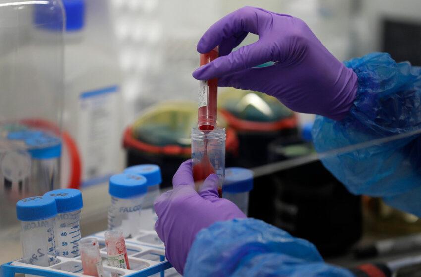 Varios estudios sugieren que la letalidad del coronavirus podría ser mucho menor que la estimada por la OMS