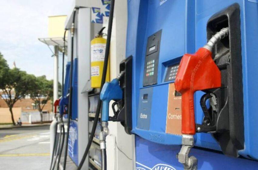 Baja el GLP; otros combustibles suben entre 0.30 y 2.00 pesos